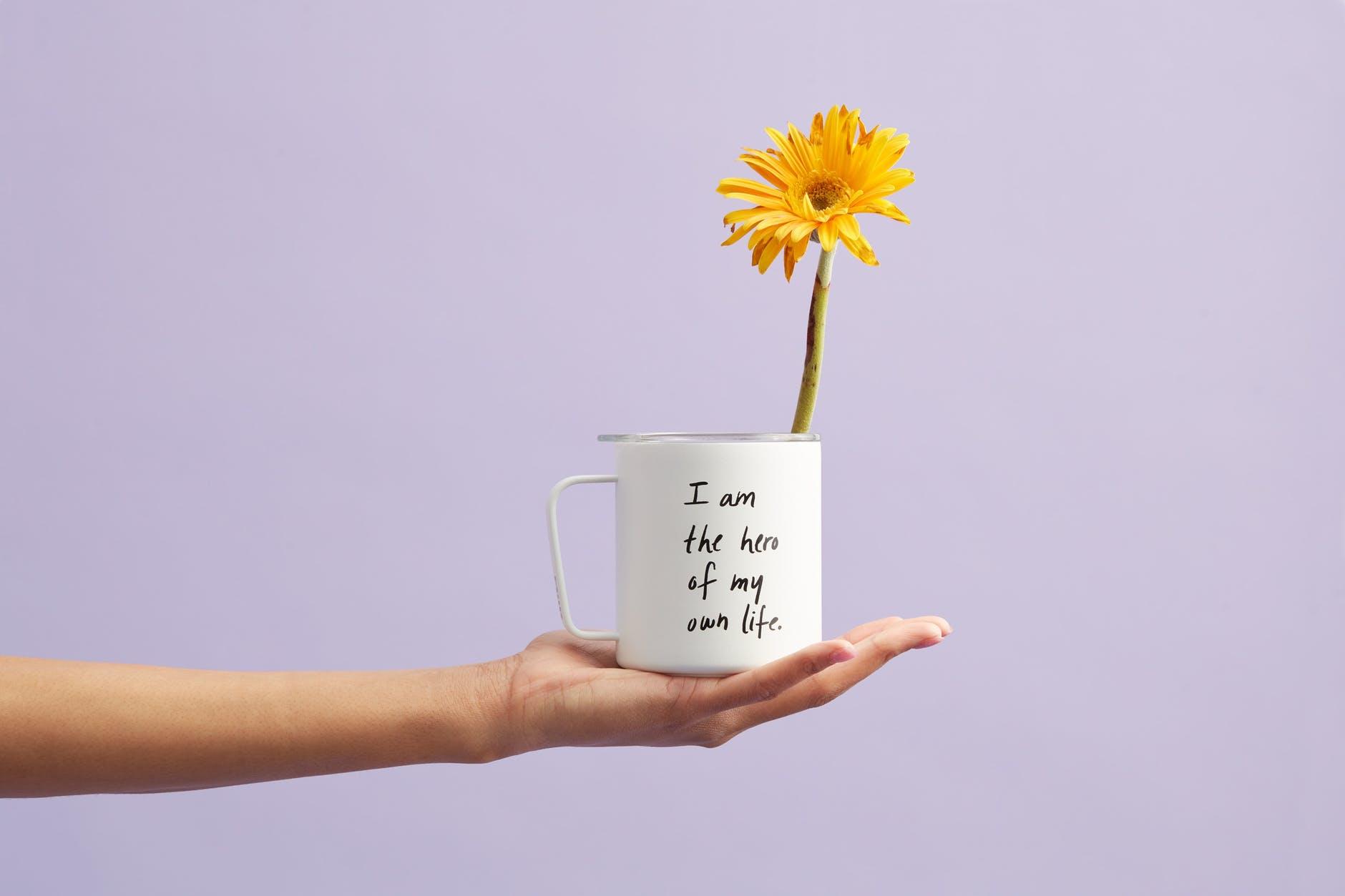 yellow petaled flower in white mug